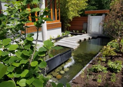 Outdoor Spaces - Backyard Pond